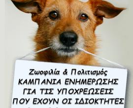 Δήμος Νέας Φιλαδέλφειας: Δράσεις ενημέρωσης για τις υποχρεώσεις των ιδιοκτητών ζώων συντροφιάς