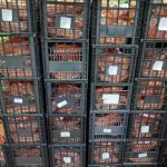 Δήμος Λυκόβρυσης: Διανομή τροφίμων με χρηματοδότηση από το Ταμείο Ευρωπαϊκής Βοήθειας για τους απόρους