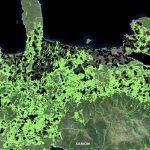 Ομόφωνη αντίθεση του ΔΣ Πλατανιά για το περιεχόμενο των αναρτηθέντων Δασικών Χαρτών