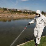Περιφέρεια Αττικής: Ξεκινά ο πρώτος κύκλος επίγειων ψεκασμών για την καταπολέμηση των κουνουπιών