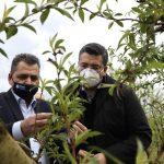 ΠΚΜ: Πληγείσες από τον παγετό περιοχές της Ημαθίας και της Πέλλας επισκέφτηκε ο Απ. Τζιτζικώστας