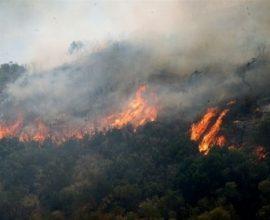 Πυρκαγιά στη  Σάμο- Άμεση κινητοποίηση επίγειων και εναέριων μέσων