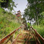 Δήμος Τρικκαίων: Συντηρείται και ομορφαίνει η περιπατητική διαδρομή του Φρουρίου