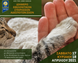 Νέα δράση στειρώσεων από τον Δήμο Χανίων σε συνεργασία με εθελοντές