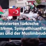 Βιέννη: Συγκεντρώσεις εξτρεμιστών τούρκων καλούν σε ένοπλη εξέγερση- Οργισμένη αντίδραση Κουρτς