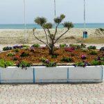 Δήμος Κατερίνης: «Ανθίζουν» πλατείες & κοινόχρηστοι χώροι