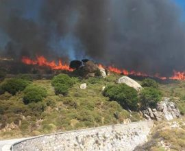 Πυρκαγιά στην Νάξο (βίντεο)
