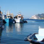 Περιφέρεια Θεσσαλίας: Εκσυγχρονίζεται το Αλιευτικό Καταφύγιο Πλατανιά