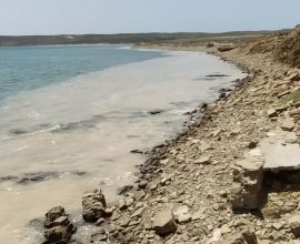 ΥΠΕΝ: Συσκέψεις για το φαινόμενο της βλέννας στα παράλια της Λήμνου