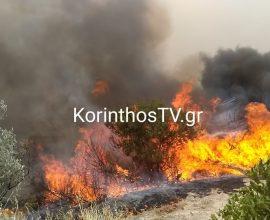 Μαίνεται η πυρκαγιά στο Καλέντζι Κορινθίας- Συνελήφθη άνδρας για εμπρησμό από αμέλεια