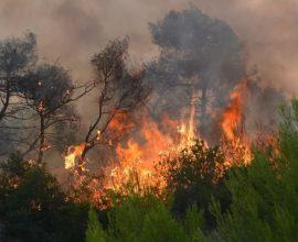Οριοθετημένη η πυρκαγιά στη Ζήρεια Αχαΐας, υπό έλεγχο στην Ρόδο