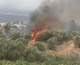 Δραματική έκκληση του δημάρχου Ερυμάνθου: «Έφυγαν πυροσβεστικές δυνάμεις, κινδυνεύουμε να καούμε»