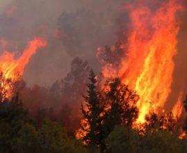ΤΩΡΑ: Πυρκαγιά στη Χαλκίδα
