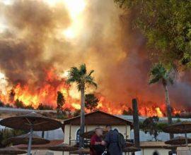Ανεξέλεγκτη η φωτιά στην Αχαϊα: Εκκενώθηκαν χωριά – Κλειστή η Εθνική Οδός