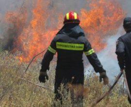 Μεγάλη φωτιά στη Ζήρια Αχαΐας