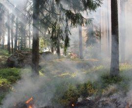Συναγερμός αύριο σε 5 περιφέρειες, πολύ υψηλός κίνδυνος πυρκαγιάς
