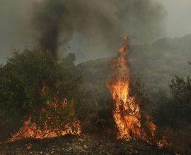 Σε εξέλιξη πυρκαγιά στην Ρόδο– Ισχυρές πυροσβεστικές δυνάμεις στο σημείο