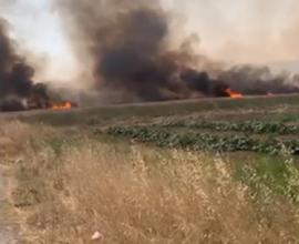 Σε πύρινο κλοιό η Εύβοια- Πυρκαγιές σε Κριεζά και Μαντούδι