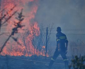 Φωτιά στην Ελαία Φωκίδας – Δόθηκε εντολή για εκκένωση της περιοχής