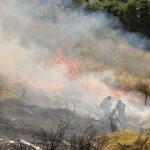 Δήμος Αιγιάλειας: Συντονισμένες ενέργειες αποκατάστασης των πληγέντων από την πυρκαγιά