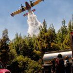 Περιφέρεια Θεσσαλίας: Σε ετοιμότητα όλες οι υπηρεσίες λόγω αυξημένου κινδύνου εκδήλωσης πυρκαγιάς