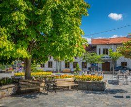 Δήμος Βόρειων Τζουμέρκων: Διαδικτυακό εκπαιδευτικό σεμινάριο με θέμα «Πολιτιστικό Management»