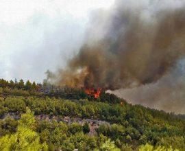 Πολύ υψηλός κίνδυνος πυρκαγιάς για δεκάδες περιοχές – Σε ετοιμότητα οι Αρχές