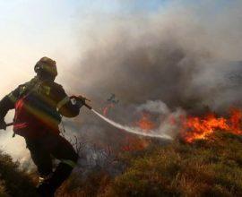 Φωτιά σε δασική έκταση στην περιοχή Καστανιά της Λακωνίας