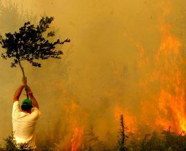 Παπαστεργίου: «Η Τοπική Αυτοδιοίκηση στην πρώτη γραμμή για την αντιμετώπιση των πυρκαγιών»