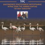 Περιφέρεια Θεσσαλίας: Διαγωνισμός ερασιτεχνικής φωτογραφίας άγριας ζωής της λίμνης Κάρλα «Αγλαΐα Τσεκούρα»