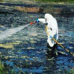 Το πρόγραμμα διαχείρισης και αντιμετώπισης κουνουπιών της Περιφέρειας Αττικής