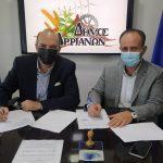 Αναβάθμιση του Συστήματος Δημοτικού Φωτισμού σε ολόκληρη την γεωγραφική επικράτεια του Δήμου Αρριανών