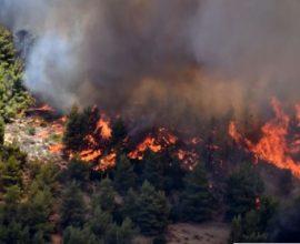 Πυρκαγιά στην Ανατολική Μάνη