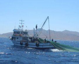Σε απόγνωση οι Έλληνες ψαράδες- Δεν θεωρούνται ποινικό αδίκημα οι παραβιάσεις των Τούρκων αλιέων