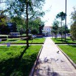 Δήμος Γλυφάδας: Ανάπλαση γεμάτη πράσινο στην πλατεία Αγίου Τρύφωνα