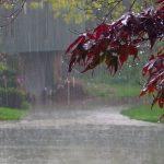 Ο καιρός αύριο: Βροχές και σποραδικές καταιγίδες, κυρίως στα δυτικά και νότια